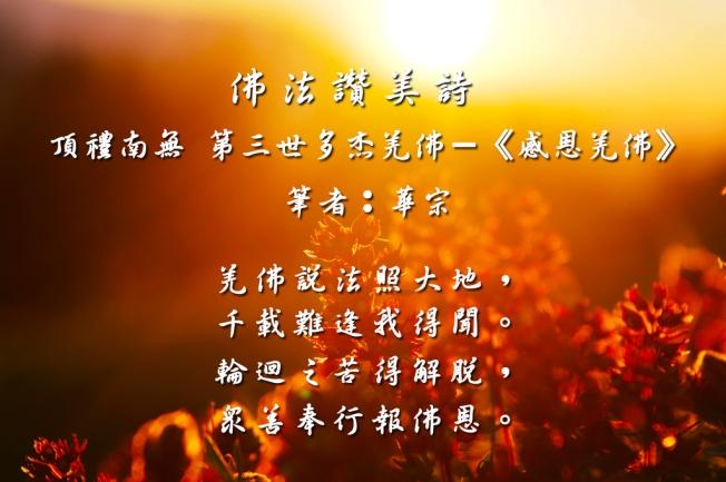 頂禮南無 第三世多杰羌佛《感恩羌佛》.jpg