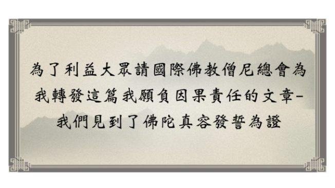 我願負因果責任的文章- 我們見到了佛陀真容發誓為證