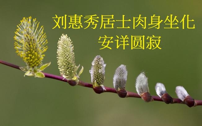 刘惠秀居士肉身坐化安详圆寂